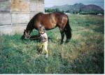 dakota and me - Pferd (24 Jahre)